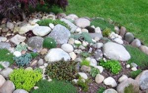 2010-rock-garden
